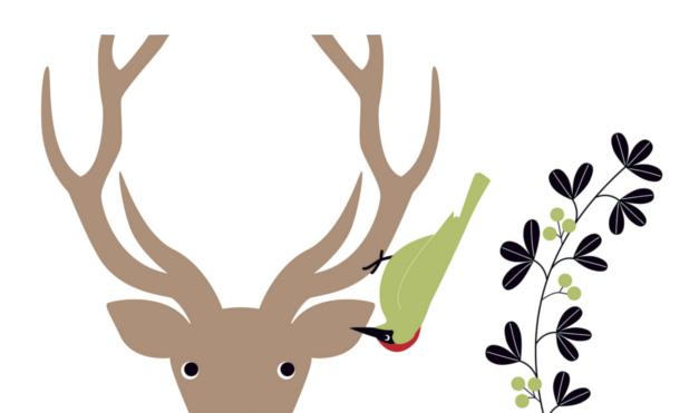 Pájaro diciéndole un secreto al venado. Ilustración del libro El Secreto, de Émilie Vast. Editorial Leetra.
