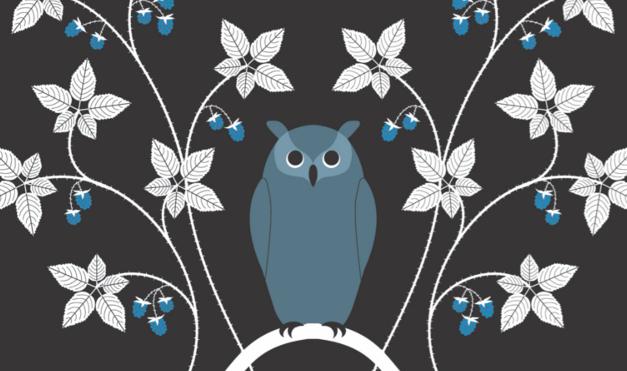 Búho sentado en árbol de noche. Ilustración del libro El Secreto, de Émilie Vast. Editorial Leetra.