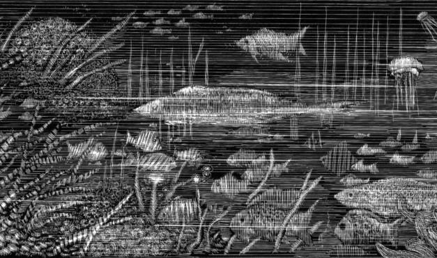 Peces en el mar. Ilustración del libro Mi taza de té, de Dror Burstein y Meir Appelfeld. Editorial Leetra.