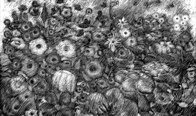 Flora del mar en blanco y negro. Ilustración del libro Mi taza de té, de Dror Burstein y Meir Appelfeld. Editorial Leetra.