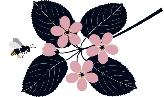 Abeja extrayendo polen de una flor. Ilustración del libro Mientras te espero, de Émilie Vast. Editorial Leetra.